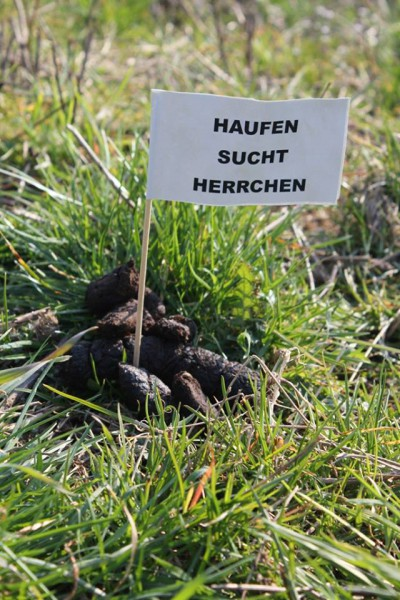 haufen_Sucht_herrchen